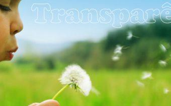 transparencia-torre-forte